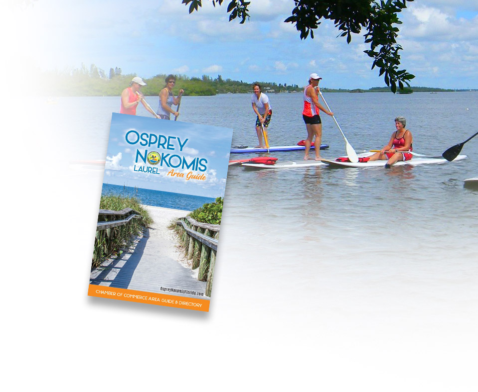 People Paddleboarding in the Intercoastal - 2019 Area Guide Cover